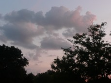 Skyscapes (11)